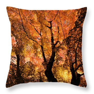 The Trees Dance As The Sun Smiles Throw Pillow by Don Schwartz