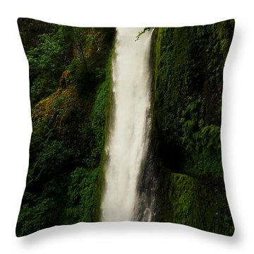 The Tunnel Behind Tunnels Falls Throw Pillow by Jeff Swan