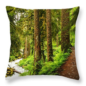 The Twisting Path Winding Through Paradise  Throw Pillow by Jeff Swan