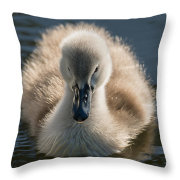 The Ugly Duckling Throw Pillow by Michael Mogensen