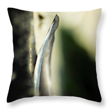The Unchanging Throw Pillow