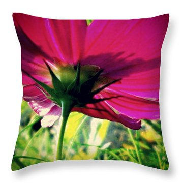 The Under Side Of Life Throw Pillow