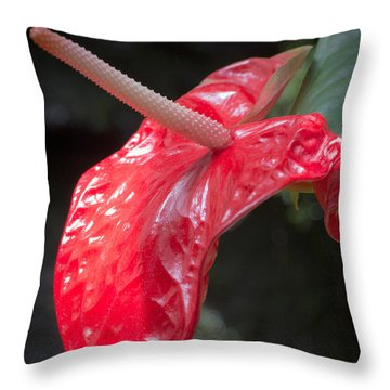 The Unique Antherium Throw Pillow
