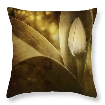 The Unveiling 2 Throw Pillow