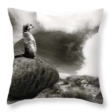 Throw Pillow featuring the photograph The View by Christine Sponchia