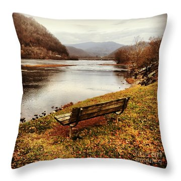 Throw Pillow featuring the photograph The View by Kerri Farley