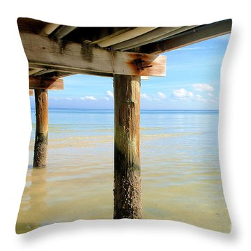 The View Throw Pillow by Margie Amberge