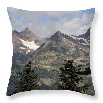the View Throw Pillow by Rod Wiens