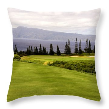 The View Throw Pillow by Scott Pellegrin