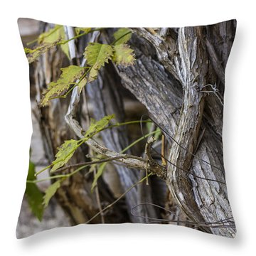 Throw Pillow featuring the photograph The Vines by Amber Kresge