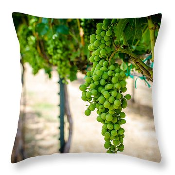 The Vineyard Throw Pillow by David Morefield