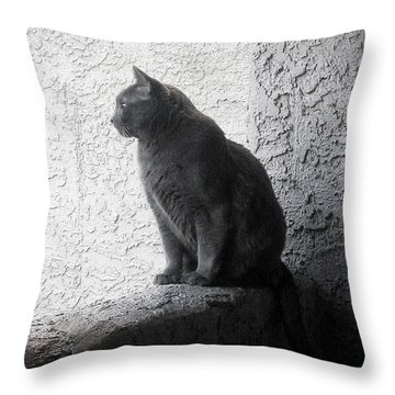 Throw Pillow featuring the photograph The Visitor by Tammy Espino