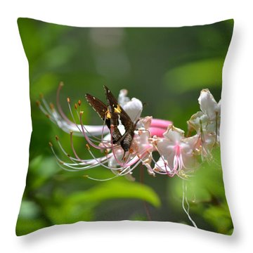 Throw Pillow featuring the photograph The Visitor by Tara Potts