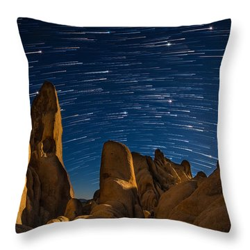 The Visitor Throw Pillow by Tassanee Angiolillo