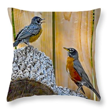 The Voice Lesson Throw Pillow by Gary Holmes