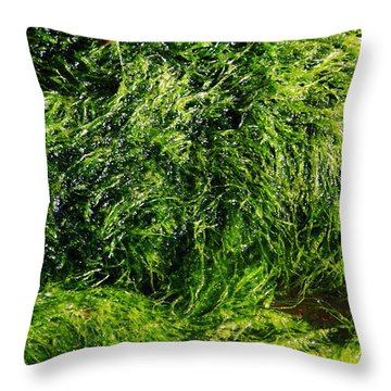 The Walls Are Alive - Seaside Abstract Throw Pillow by Aidan Moran