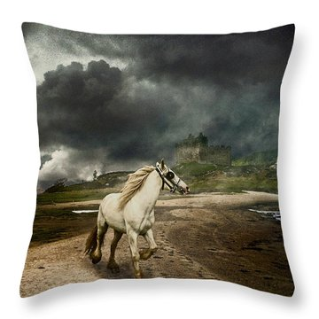 Throw Pillow featuring the photograph The Wandering Gypsy by Brian Tarr