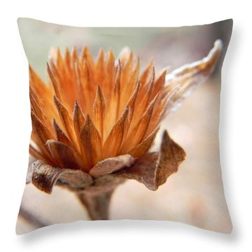 The Wandering Rustic Throw Pillow by Leah Moore