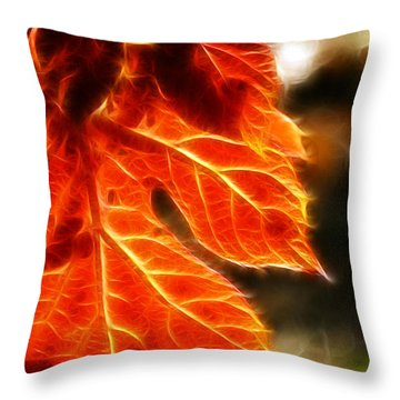 The Warmth Of Fall Throw Pillow