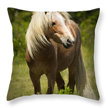 The Watch Throw Pillow by Carrie Cranwill