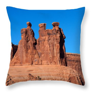 Throw Pillow featuring the photograph The Watchers by John M Bailey