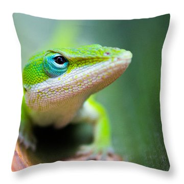 The Watching Eye Throw Pillow by Shelby  Young