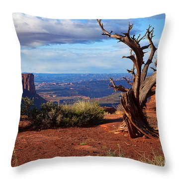 The Watchman Throw Pillow by Jim Garrison