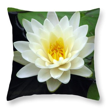 Throw Pillow featuring the photograph The Water Lilies Collection - 02 by Pamela Critchlow