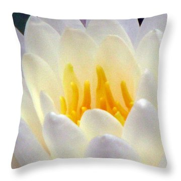 Throw Pillow featuring the photograph The Water Lilies Collection - 11 by Pamela Critchlow