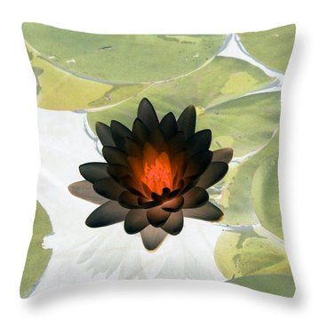 Throw Pillow featuring the photograph The Water Lilies Collection - Photopower 1034 by Pamela Critchlow