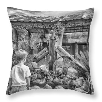 Throw Pillow featuring the photograph The Watering Hole by Howard Salmon
