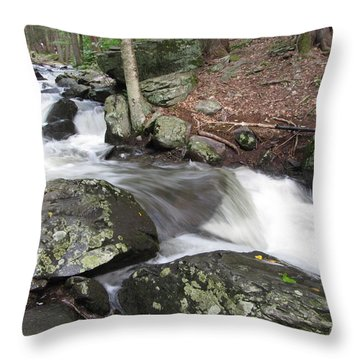 The Watering Place Throw Pillow by Richard Reeve