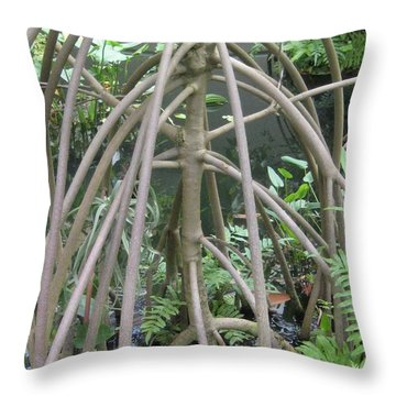 The Watery Thunder Dome Throw Pillow
