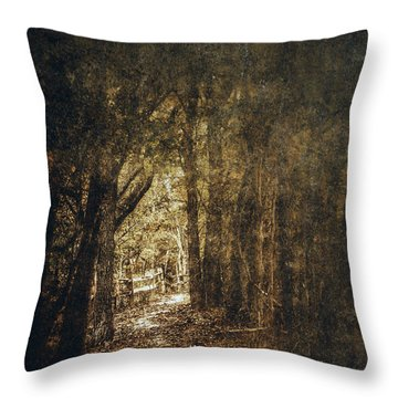 The Way Out Throw Pillow by Scott Norris
