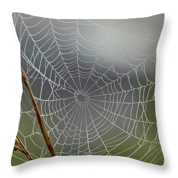 Throw Pillow featuring the photograph The Web by Kerri Farley