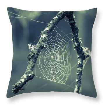 The Webs We Weave Throw Pillow by Edward Fielding