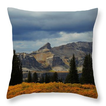 Throw Pillow featuring the photograph The Wedge by Raymond Salani III
