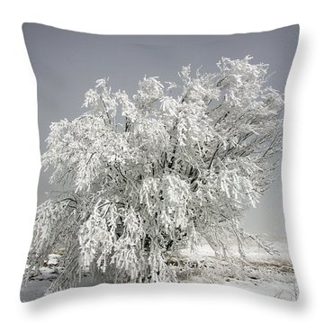 The Weight Of Winter Throw Pillow by John Haldane