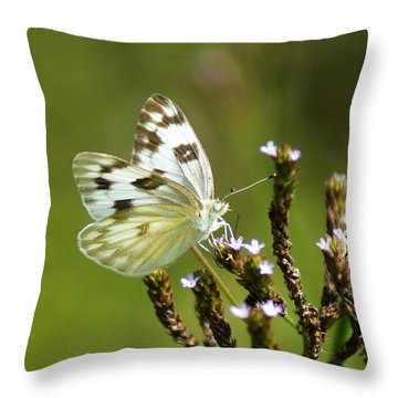 The Western White Throw Pillow by Kim Pate