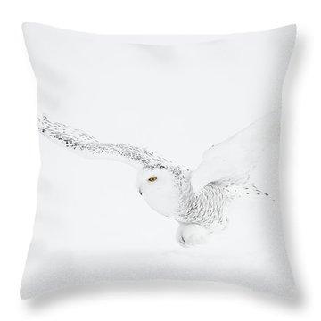Raptor Throw Pillows