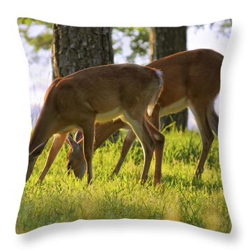 The Whitetail Deer Of Mt. Nebo - Arkansas Throw Pillow