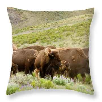 The Wild West Throw Pillow by Bill Gallagher