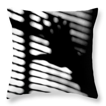 The Window Throw Pillow by Lin Haring