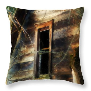 The Window2 Throw Pillow