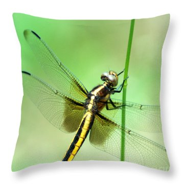 The Wings Of A Dragon Throw Pillow