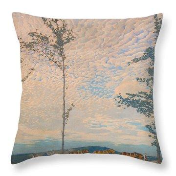 The Wooden Plough Throw Pillow