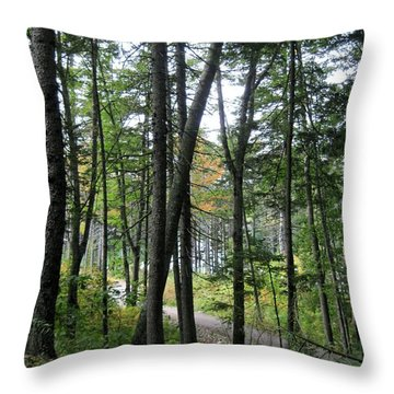 The Woods Coastal Maine Botanical Gardens Throw Pillow by Patricia E Sundik