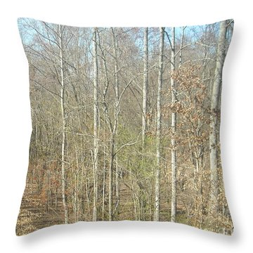 The Woods Throw Pillow by Joseph Baril