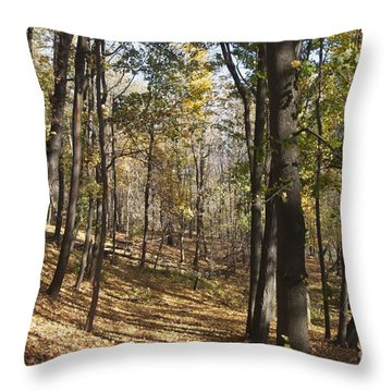 Throw Pillow featuring the photograph The Woods by William Norton