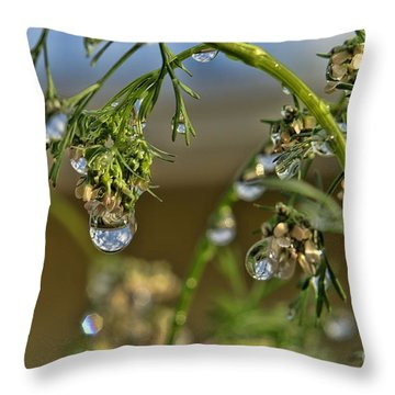 The World In A Drop Of Water Throw Pillow by Peggy Hughes